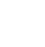 Shank Instruments Milano: Chitarre, Bassi, Batterie