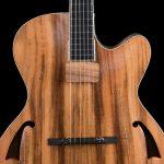 Chitarra archtop jazz liuteria Shank Instruments Milano