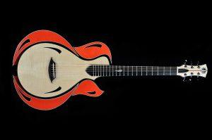 Shank Instruments modular concept guitar